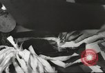 Image of French Red Cross workers Thionville France, 1945, second 44 stock footage video 65675062327