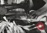 Image of French Red Cross workers Thionville France, 1945, second 47 stock footage video 65675062327