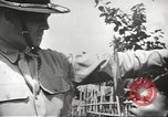 Image of Filipino tribal people Philippines, 1945, second 43 stock footage video 65675062336
