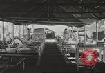 Image of American prisoners of war Philippines, 1945, second 9 stock footage video 65675062342