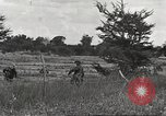 Image of United States troops Philippines, 1945, second 31 stock footage video 65675062344