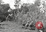 Image of United States troops Philippines, 1945, second 45 stock footage video 65675062344