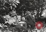 Image of United States troops Philippines, 1945, second 49 stock footage video 65675062344