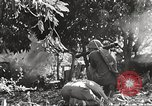 Image of United States troops Philippines, 1945, second 50 stock footage video 65675062344