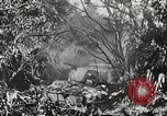 Image of United States troops Philippines, 1945, second 55 stock footage video 65675062344