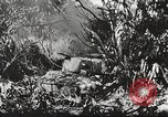 Image of United States troops Philippines, 1945, second 60 stock footage video 65675062344