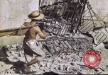 Image of Allied troops Intramuros Manila, 1945, second 16 stock footage video 65675062345