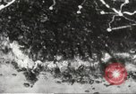 Image of Japanese positions Philippines, 1942, second 62 stock footage video 65675062352