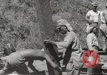 Image of Japanese air operations at Clark Field Philippines, 1942, second 21 stock footage video 65675062361