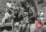 Image of Japanese air operations at Clark Field Philippines, 1942, second 25 stock footage video 65675062361