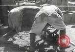 Image of Japanese air operations at Clark Field Philippines, 1942, second 41 stock footage video 65675062361