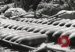 Image of Japanese air operations at Clark Field Philippines, 1942, second 48 stock footage video 65675062361