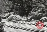 Image of Japanese air operations at Clark Field Philippines, 1942, second 50 stock footage video 65675062361