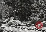 Image of Japanese air operations at Clark Field Philippines, 1942, second 52 stock footage video 65675062361