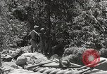 Image of Japanese air operations at Clark Field Philippines, 1942, second 53 stock footage video 65675062361