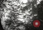 Image of Japanese soldiers Philippines, 1942, second 16 stock footage video 65675062362