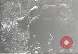 Image of Japanese soldiers Philippines, 1942, second 26 stock footage video 65675062362