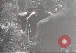 Image of Japanese soldiers Philippines, 1942, second 28 stock footage video 65675062362