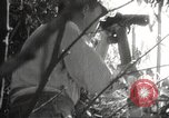 Image of Japanese soldiers Philippines, 1942, second 38 stock footage video 65675062362
