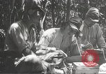 Image of Japanese soldiers Philippines, 1942, second 50 stock footage video 65675062362