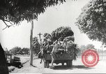 Image of Japanese soldiers Philippines, 1942, second 48 stock footage video 65675062363