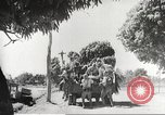 Image of Japanese soldiers Philippines, 1942, second 49 stock footage video 65675062363