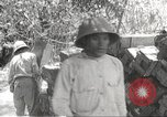 Image of Japanese soldiers Philippines, 1942, second 5 stock footage video 65675062364