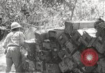 Image of Japanese soldiers Philippines, 1942, second 6 stock footage video 65675062364