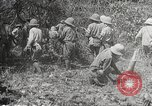 Image of Japanese soldiers Philippines, 1942, second 33 stock footage video 65675062364