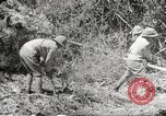 Image of Japanese soldiers Philippines, 1942, second 34 stock footage video 65675062364
