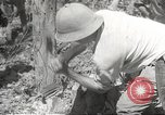 Image of Japanese soldiers Philippines, 1942, second 50 stock footage video 65675062364