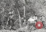 Image of Japanese soldiers Philippines, 1942, second 54 stock footage video 65675062364