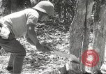 Image of Japanese soldiers Philippines, 1942, second 61 stock footage video 65675062364