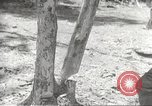 Image of Japanese soldiers Philippines, 1942, second 62 stock footage video 65675062364