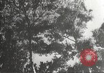 Image of Japanese soldiers Philippines, 1942, second 2 stock footage video 65675062367