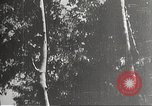 Image of Japanese soldiers Philippines, 1942, second 4 stock footage video 65675062367