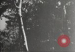 Image of Japanese soldiers Philippines, 1942, second 5 stock footage video 65675062367