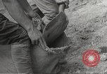Image of Japanese soldiers Philippines, 1942, second 13 stock footage video 65675062367