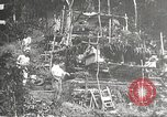 Image of Japanese soldiers Philippines, 1942, second 25 stock footage video 65675062367