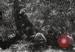 Image of Japanese soldiers Philippines, 1942, second 35 stock footage video 65675062372
