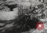 Image of Japanese soldiers Philippines, 1942, second 39 stock footage video 65675062372