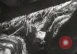 Image of Japanese soldiers Philippines, 1942, second 42 stock footage video 65675062372