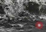 Image of Japanese soldiers Philippines, 1942, second 43 stock footage video 65675062372