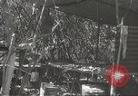Image of Japanese soldiers Philippines, 1942, second 54 stock footage video 65675062372