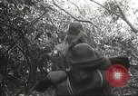 Image of Japanese soldiers Philippines, 1942, second 57 stock footage video 65675062372