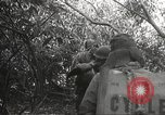 Image of Japanese soldiers Philippines, 1942, second 59 stock footage video 65675062372