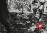 Image of Japanese soldiers Philippines, 1942, second 61 stock footage video 65675062372