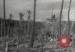 Image of Japanese soldiers Bataan Luzon Philippines, 1942, second 61 stock footage video 65675062377