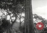 Image of Japanese soldiers Corregidor Island Philippines, 1942, second 9 stock footage video 65675062379