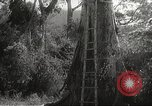 Image of Japanese soldiers Corregidor Island Philippines, 1942, second 13 stock footage video 65675062379